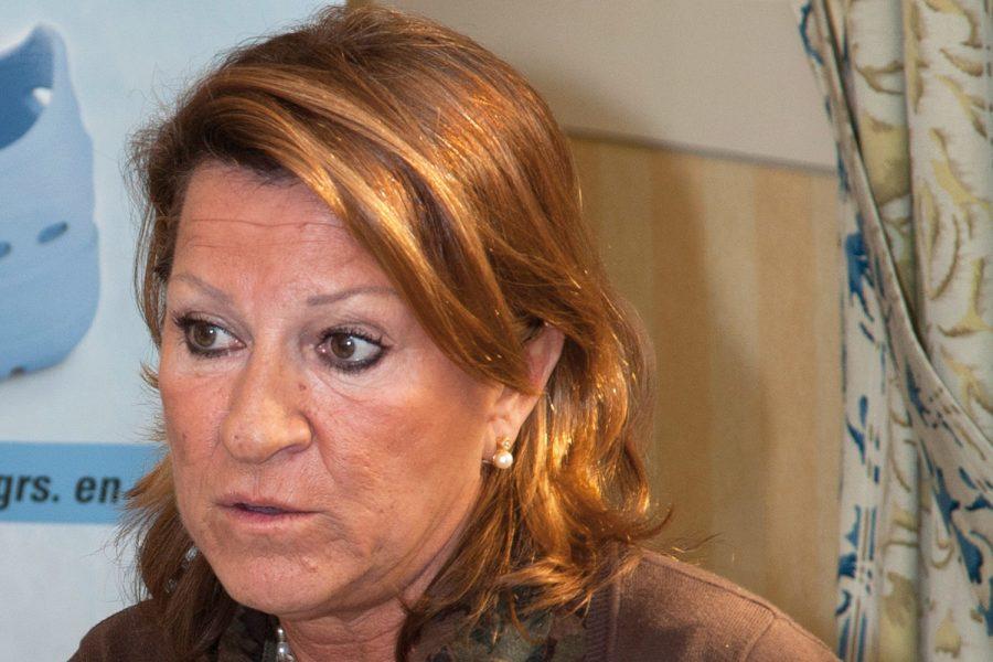 Silvia Nogareda. Norma ISO/TR 12296:2012.