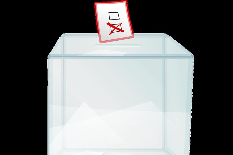Procesos de votación.